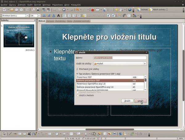 Snímek výběru správného formátu pro uložení šablony
