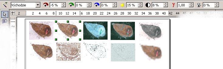 Panel objektov pre úpravu obrázkov; prevedené efekty s obrázkami